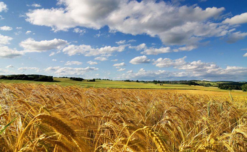 Per la Sovranità Alimentare, Contro le Nocività