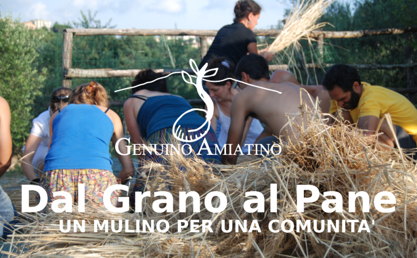 copertinacrowfoundingCrowdfunding Genuino Amiatino